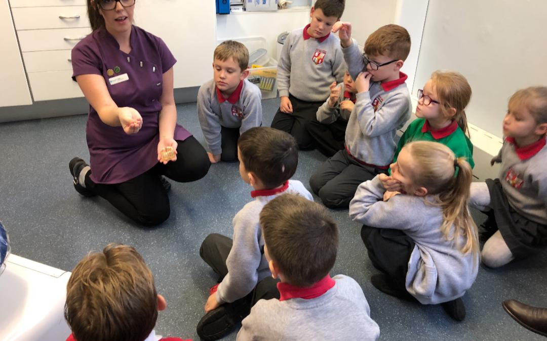 A School Trip to Darwenside Dental Practice